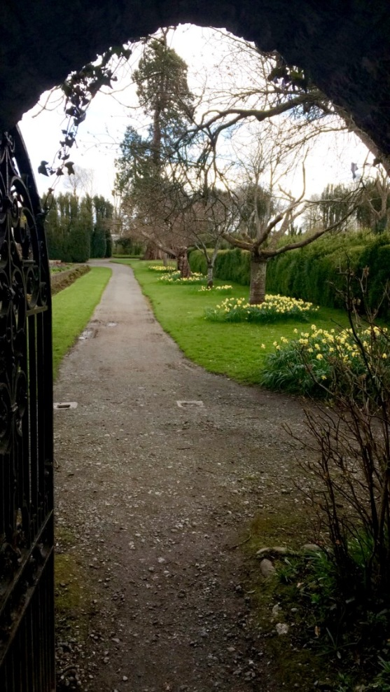 Birr Castle and Gardens 3