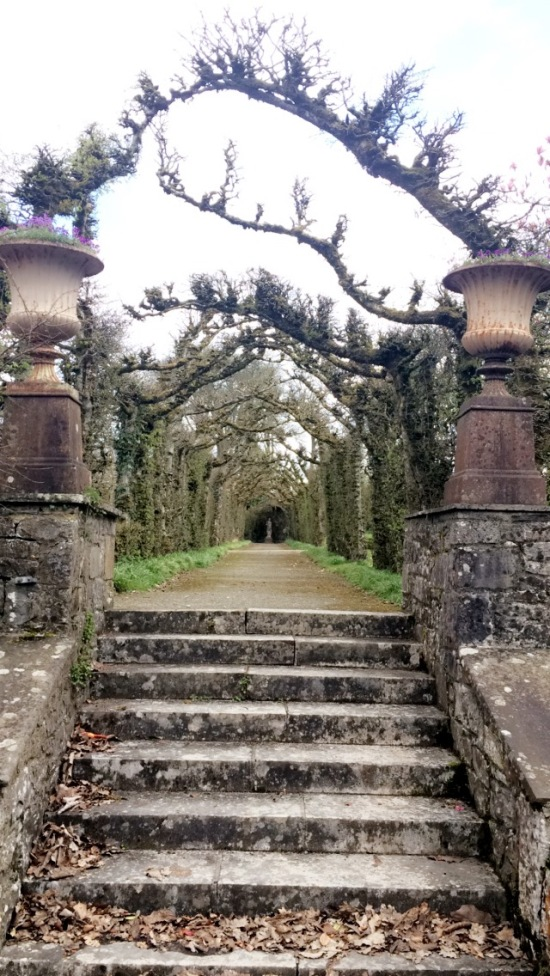 Birr Castle and Gardens 7