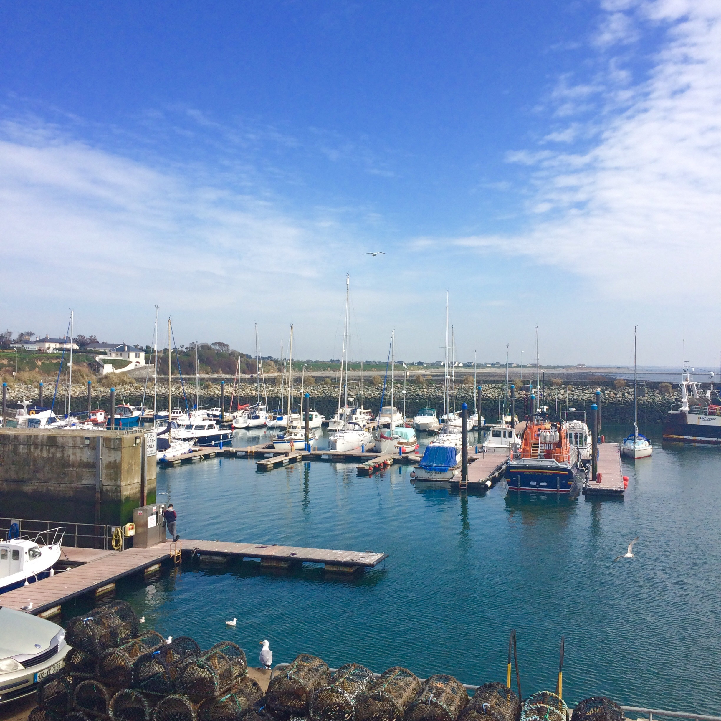 Top things to do in Wexford Town, Ireland - Lonely Planet