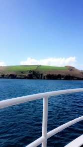 Kinsale Harbour cruise